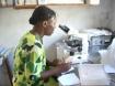 HGD Laboratory Staff examining specimen